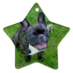 Sitting 2 French Bulldog Star Ornament