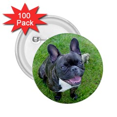 Sitting 2 French Bulldog 2.25  Button (100 pack)