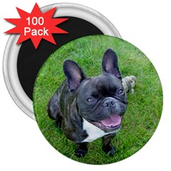 Sitting 2 French Bulldog 3  Button Magnet (100 pack)