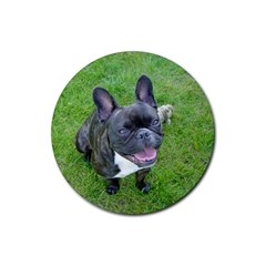Sitting 2 French Bulldog Drink Coasters 4 Pack (Round)