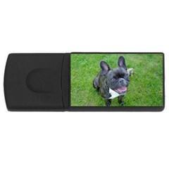 Sitting 2 French Bulldog 4GB USB Flash Drive (Rectangle)