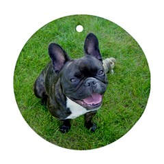 Sitting 2 French Bulldog Round Ornament (Two Sides)