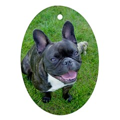 Sitting 2 French Bulldog Oval Ornament (Two Sides)