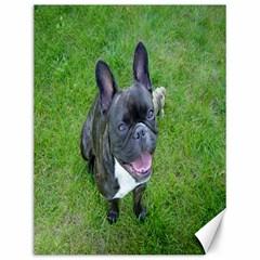 Sitting 2 French Bulldog Canvas 12  x 16  (Unframed)
