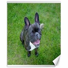 Sitting 2 French Bulldog Canvas 16  x 20  (Unframed)