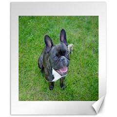 Sitting 2 French Bulldog Canvas 20  x 24  (Unframed)