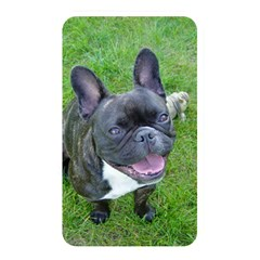Sitting 2 French Bulldog Memory Card Reader (Rectangular)