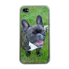 Sitting 2 French Bulldog Apple iPhone 4 Case (Clear)