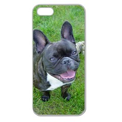 Sitting 2 French Bulldog Apple Seamless iPhone 5 Case (Clear)
