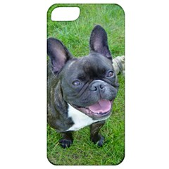 Sitting 2 French Bulldog Apple iPhone 5 Classic Hardshell Case