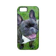 Sitting 2 French Bulldog Apple iPhone 5 Classic Hardshell Case (PC+Silicone)