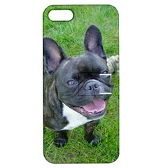 Sitting 2 French Bulldog Apple iPhone 5 Hardshell Case with Stand