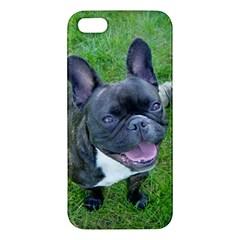Sitting 2 French Bulldog Apple iPhone 5 Premium Hardshell Case