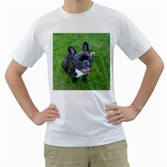 Sitting 2 French Bulldog Men s T-Shirt (White)