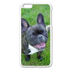 Sitting 2 French Bulldog Apple iPhone 6 Plus Enamel White Case