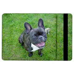 Sitting 2 French Bulldog Apple iPad Air 2 Flip Case