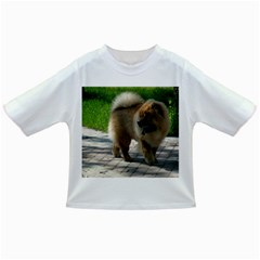 Chow Chow Full Baby T-shirt