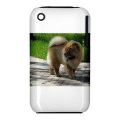 Chow Chow Full Apple iPhone 3G/3GS Hardshell Case (PC+Silicone)