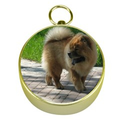 Chow Chow Full Gold Compass
