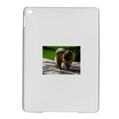 Chow Chow Full Apple iPad Air 2 Hardshell Case