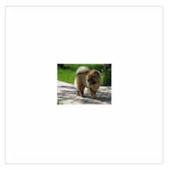 Chow Chow Full Satin Scarf (Square)