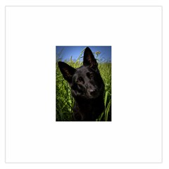 Black German Shepherd Satin Scarf (Square)