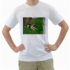 3 German Shepherd Laying Men s T-Shirt (White)