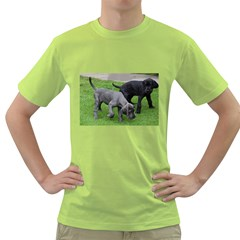 Dane Pups Men s T-shirt (Green)