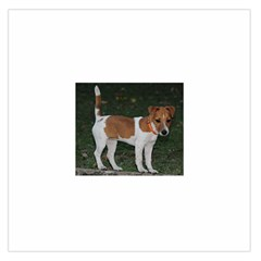 Jack Russell Terrier Full Satin Scarf (Square)