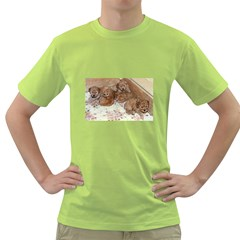 Apricot Poodle Pups Men s T-shirt (Green)