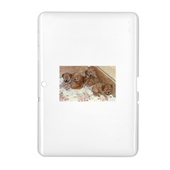 Apricot Poodle Pups Samsung Galaxy Tab 2 (10.1 ) P5100 Hardshell Case