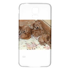 Apricot Poodle Pups Samsung Galaxy S5 Back Case (white)