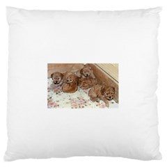 Apricot Poodle Pups Standard Flano Cushion Case (two Sides)