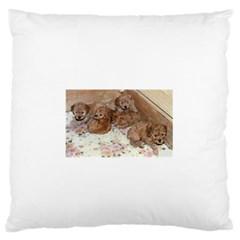 Apricot Poodle Pups Large Flano Cushion Case (Two Sides)