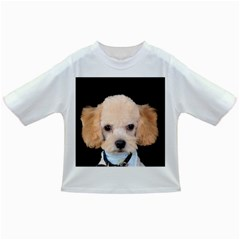 Apricot Poodle Baby T Shirt