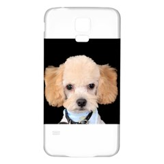 Apricot Poodle Samsung Galaxy S5 Back Case (White)