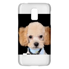 Apricot Poodle Samsung Galaxy S5 Mini Hardshell Case