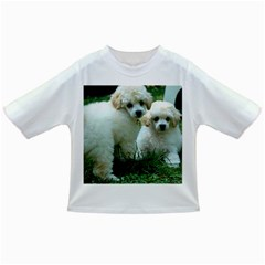 White 2 Poodle Pups Baby T-shirt