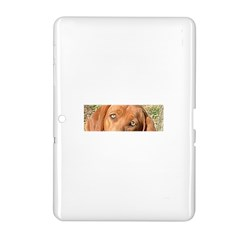 Redbone Coonhound Eyes Samsung Galaxy Tab 2 (10.1 ) P5100 Hardshell Case