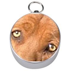 Redbone Coonhound Eyes Silver Compass