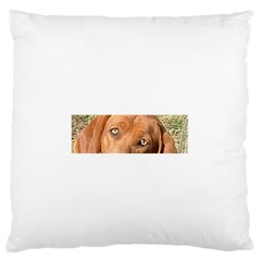 Redbone Coonhound Eyes Large Flano Cushion Case (Two Sides)