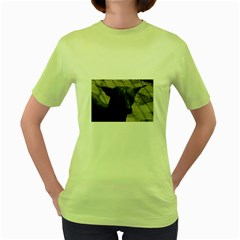 mexican hairless / Xoloitzcuintle Women s T-shirt (Green)