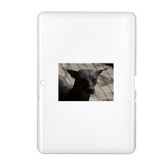 mexican hairless / Xoloitzcuintle Samsung Galaxy Tab 2 (10.1 ) P5100 Hardshell Case