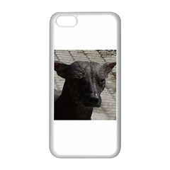 mexican hairless / Xoloitzcuintle Apple iPhone 5C Seamless Case (White)