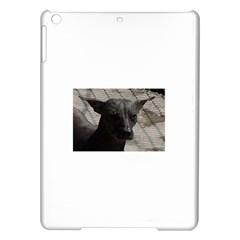 mexican hairless / Xoloitzcuintle Apple iPad Air Hardshell Case