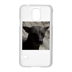 mexican hairless / Xoloitzcuintle Samsung Galaxy S5 Case (White)