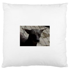 Mexican Hairless / Xoloitzcuintle Standard Flano Cushion Case (two Sides)