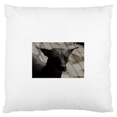 mexican hairless / Xoloitzcuintle Large Flano Cushion Case (Two Sides)