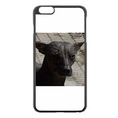 mexican hairless / Xoloitzcuintle Apple iPhone 6 Plus Black Enamel Case