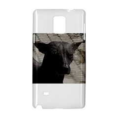 Mexican Hairless / Xoloitzcuintle Samsung Galaxy Note 4 Hardshell Case